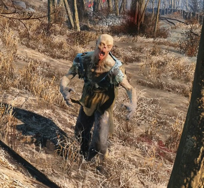 Feral Ghoul Fallout 4 Wiki